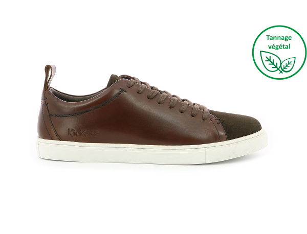 ECOLY MARRON FONCE