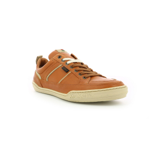 Kickers JAZZ BROWN   WHITE