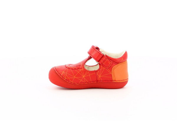 SALOME RED GALACTIC