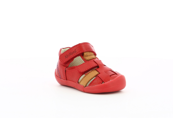 WASABOU RED CAMEL