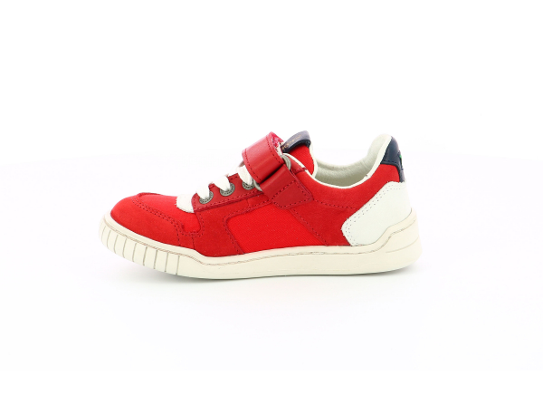 WINTUP RED WHITE NAVY