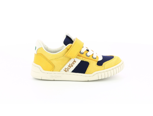 WINTUP YELLOW NAVY WHITE